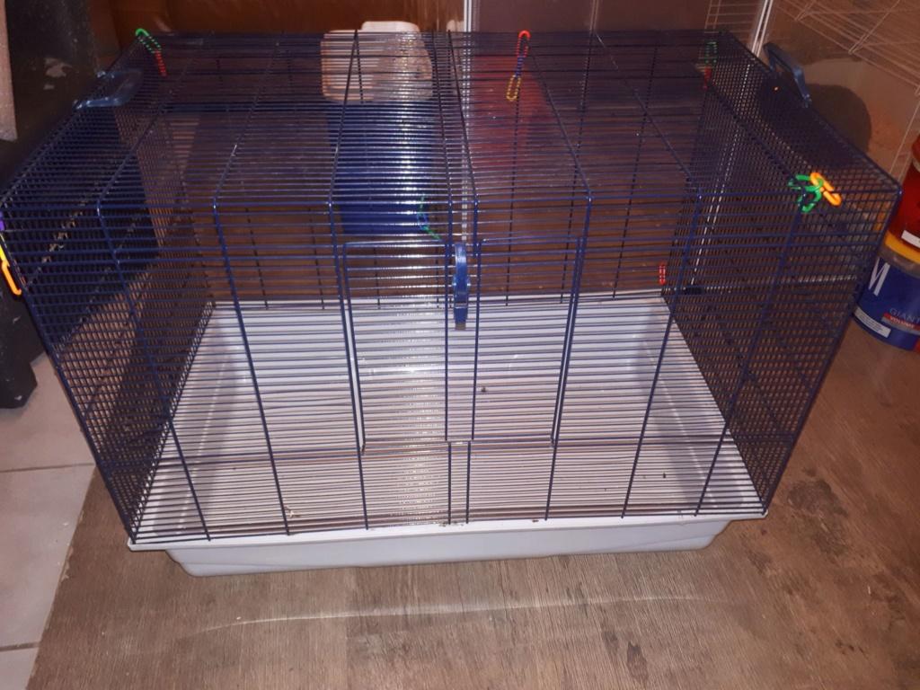 A vendre : 4 Cage différentes (Rats et petits rongeurs)  F_m_210