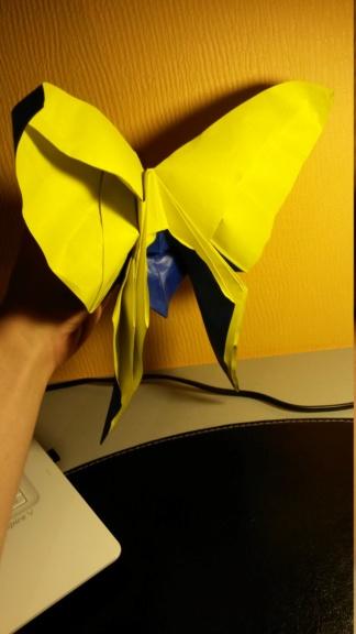 Passe temps l'origami ? 20160510