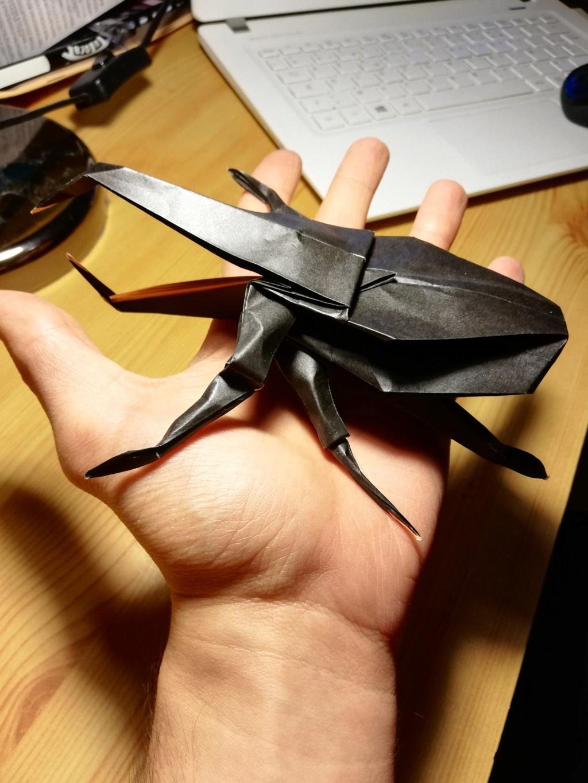 Passe temps l'origami ? Img_2026