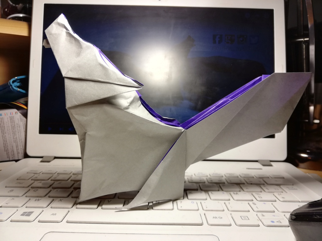 Passe temps l'origami ? Img_2028