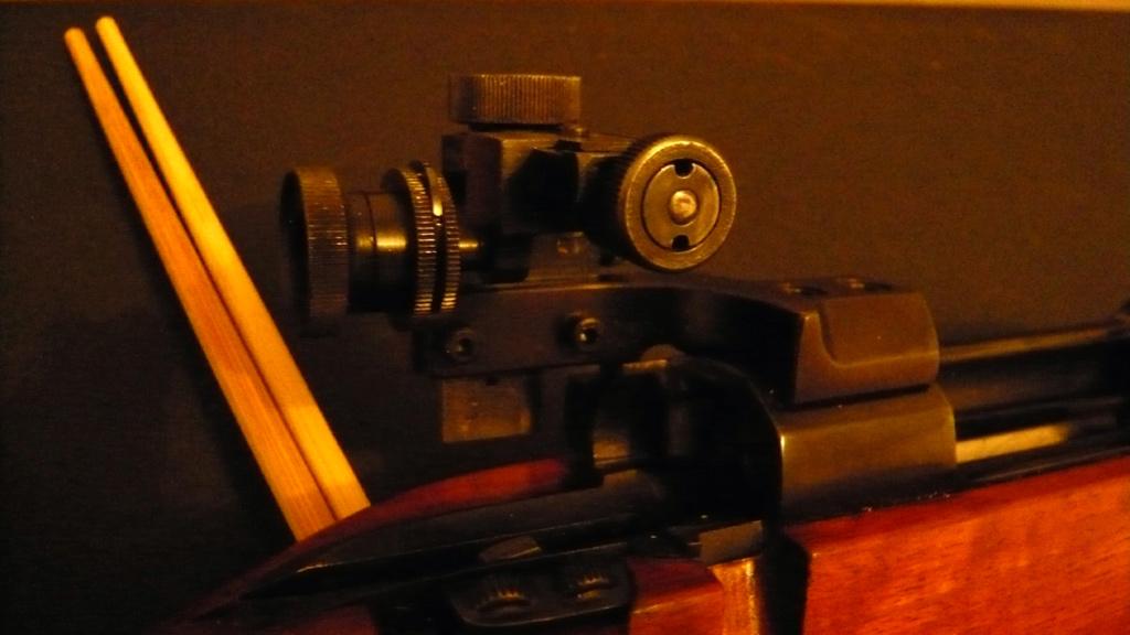 achat carabine 100/300 m P1010522