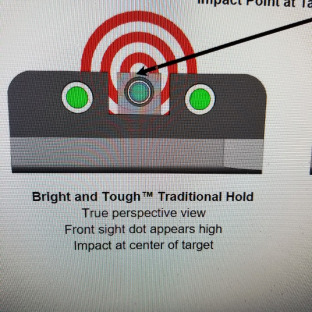 Need help with sight picture 20210110