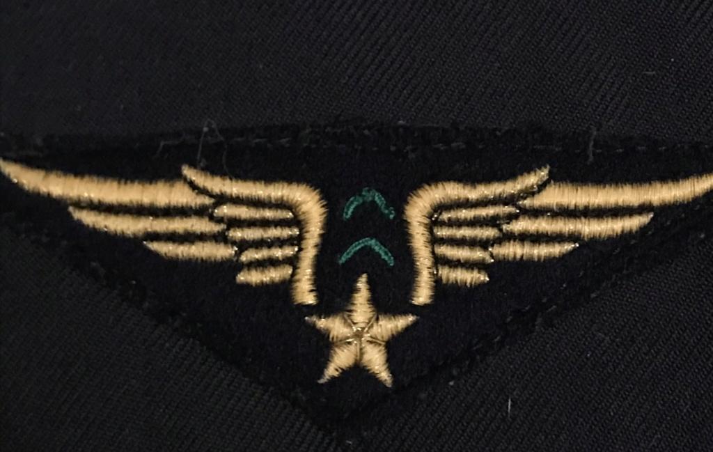 Un insigne de l'armée de l'air E3070e10