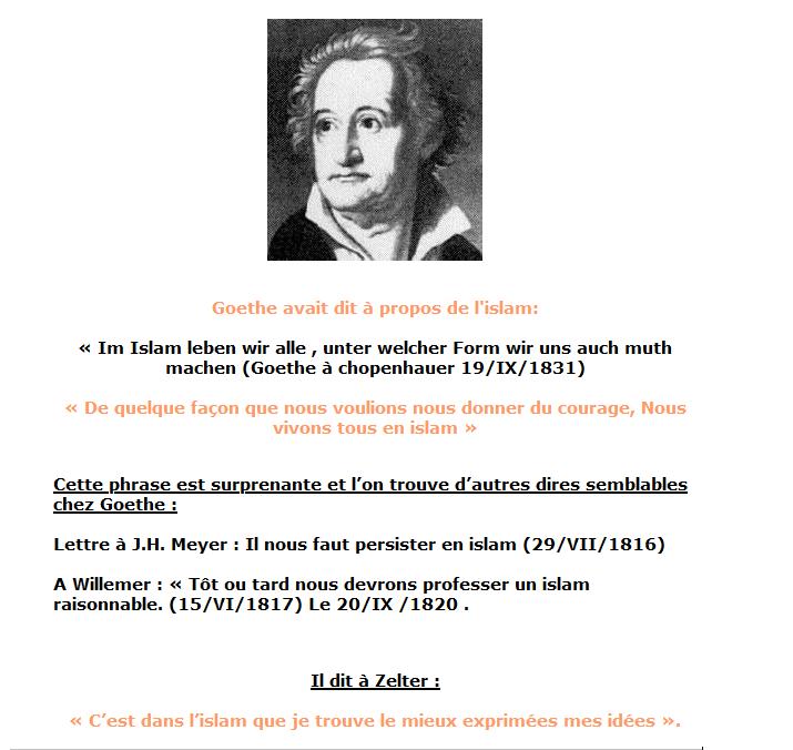 Causerie, tohu bohu et tutti frutti Goethe10