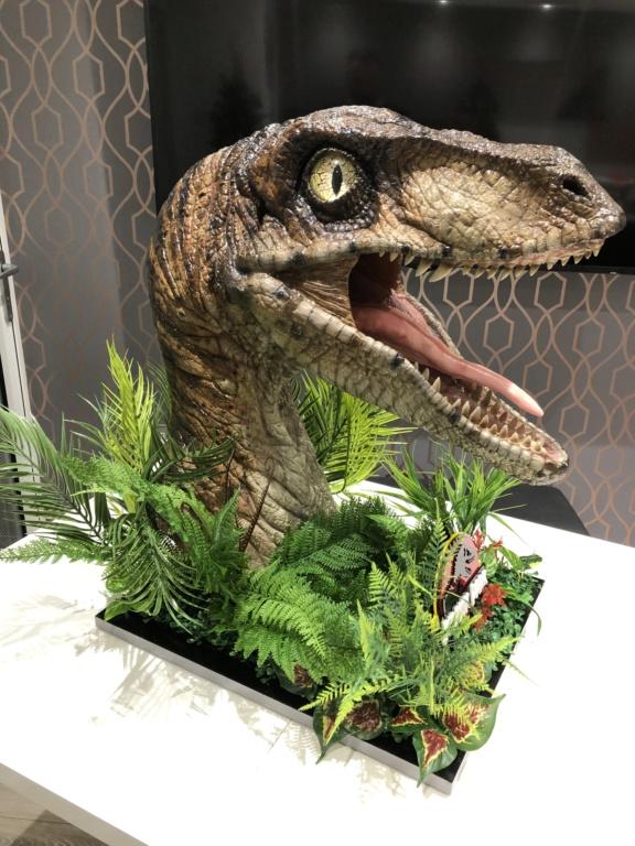 Jurassic park replicas  F5e5c310