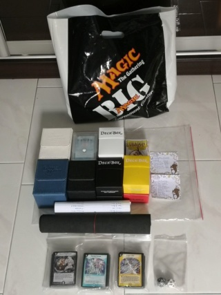 Personal Decks Showcase(Singapore Professional Player) Decks_12