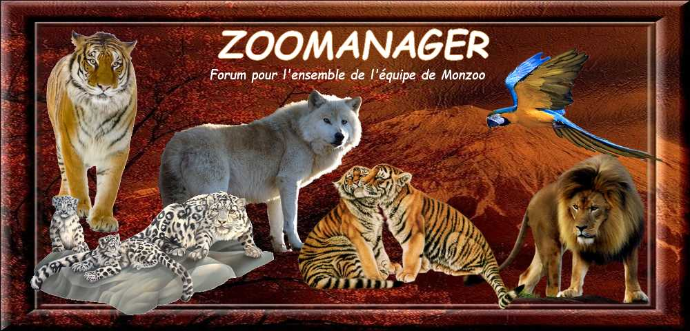 Zoomanager