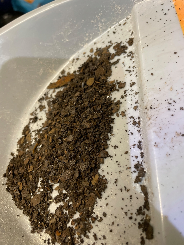 Operation Pretty Pussy: Restoring my '03 24,000 Miler 14706910