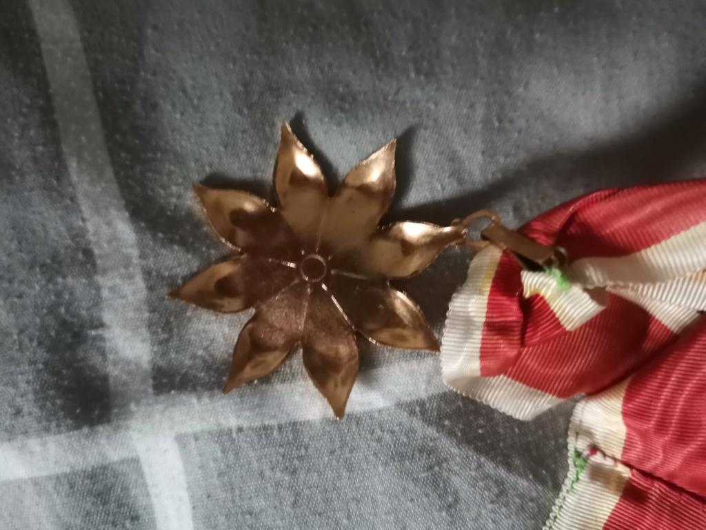 Identification écharpe  Img_2010
