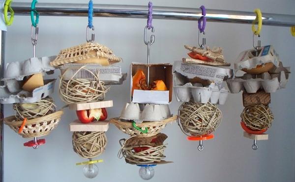 Petit Oiseau, Piwi, Plum & Toufy. Kabobs10