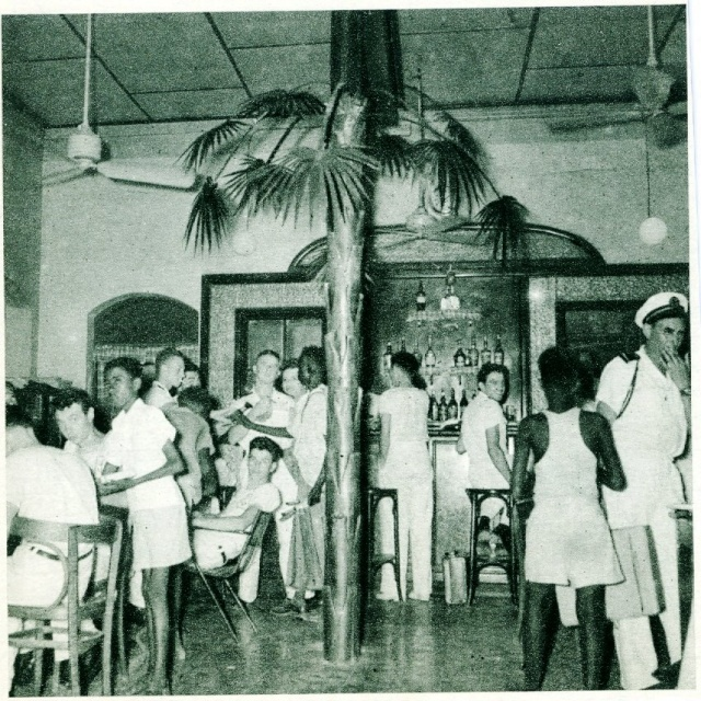 palmier en zinc 1977