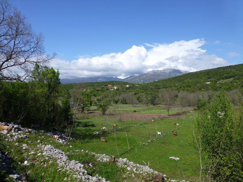 Crna Gora (Montenegro) au jour le jour Mne210