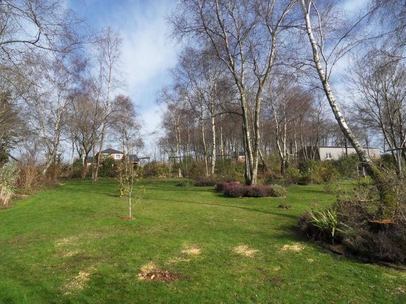 le jardin de danyland - Page 4 03-sdc14