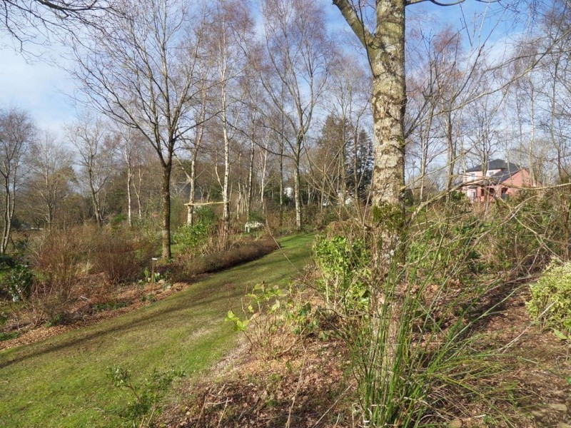 le jardin de danyland - Page 4 08-sdc14