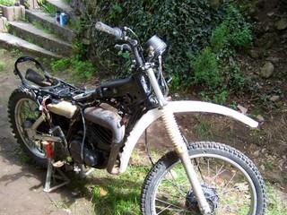 DTMX 125 cc MEMBRES : Personnalisées 10019610
