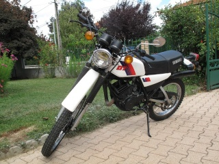 DTMX 125cc Membres / Mod. 1981 6459e710