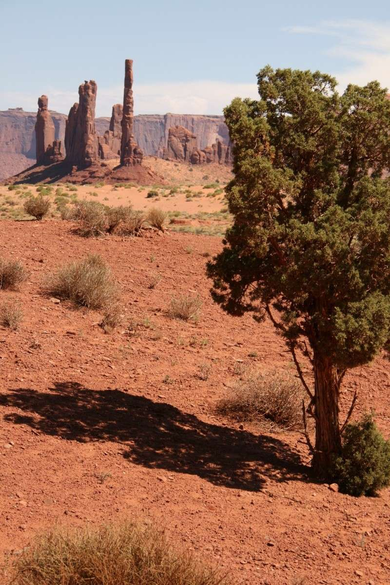 Road Trip USA Stephscrap - Page 2 Img_9417