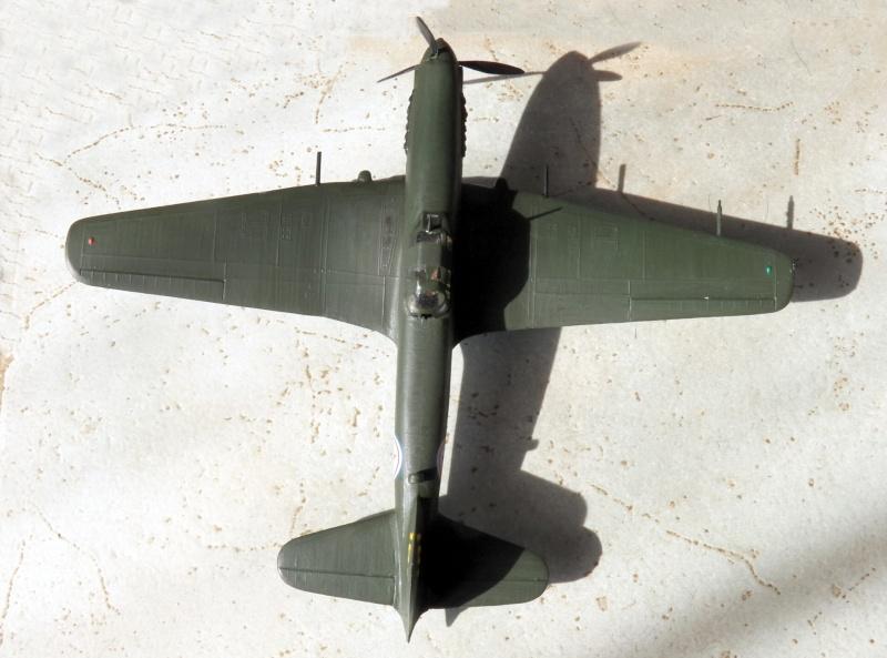 [KP] Iliouchine Il-10, après 1971 (?) 101_1424
