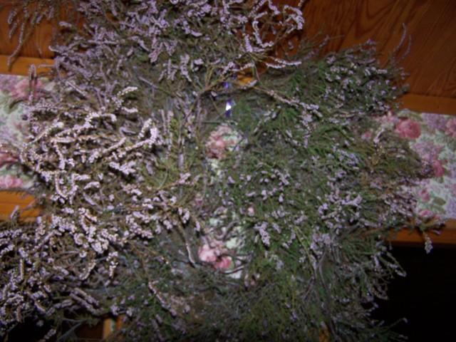 couronnes-plantes 100_8018