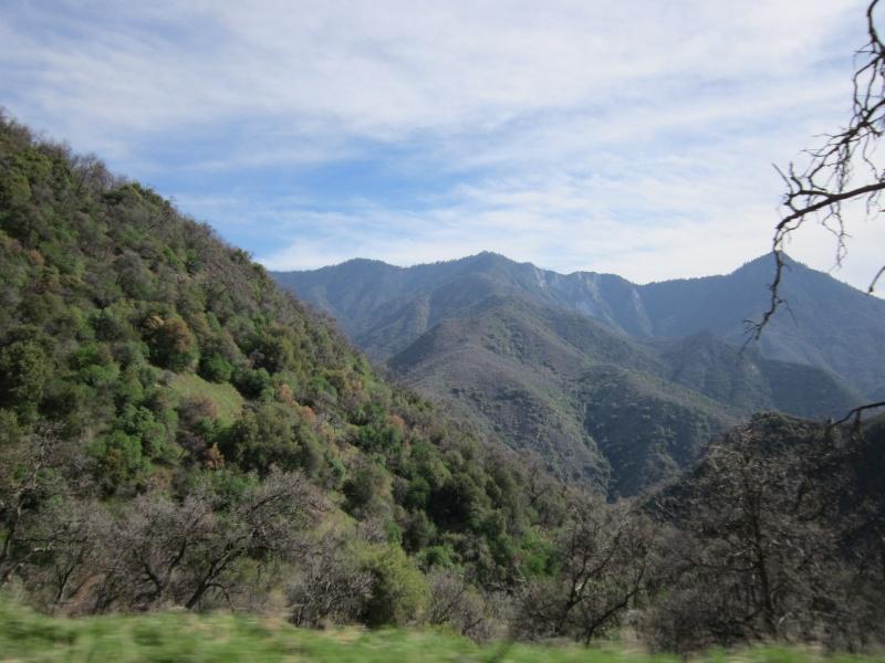 Mon dernier week end Californien. Img_1016
