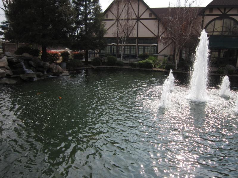 Joli bassin. Img_1511