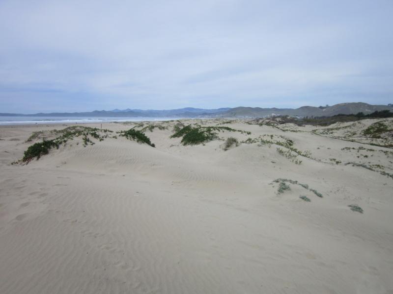 Mon dernier week end Californien. Img_1513
