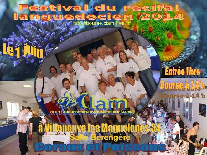La bourse de Clam le 01 juin 2014 Clam0110