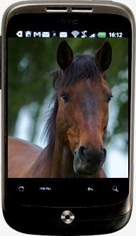 Le smartphone de Luka. Htcluk11