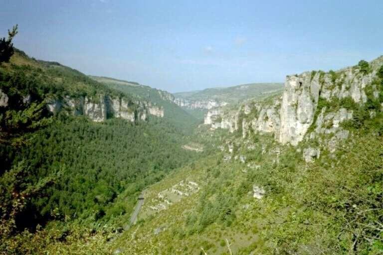 Languedoc-Roussillon, bref apperçu Cevenn10