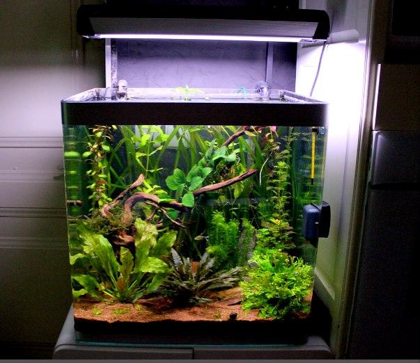 [Vends] aquarium OSAKA 155 litres + filtre JBL Cristalprofi e900 48477911