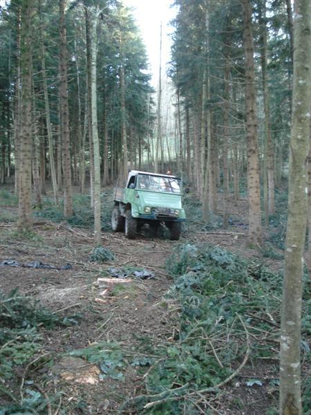unimog mb-trac wf-trac pour utilisation forestière dans le monde - Page 28 Dsc08411