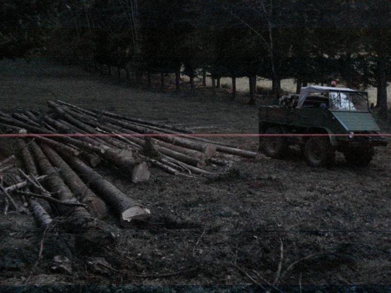 unimog mb-trac wf-trac pour utilisation forestière dans le monde - Page 28 Dsc08412