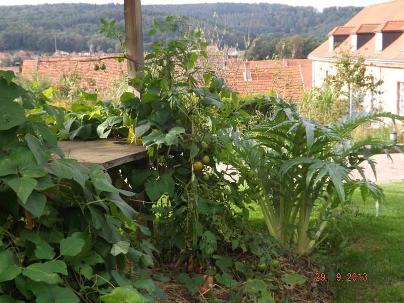 Jardin pour la Paix - Bitche . Dscf8511