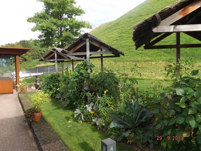 Jardin pour la Paix - Bitche . Dscf8513
