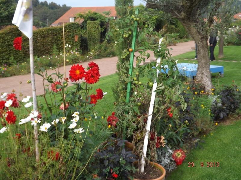 Jardin pour la Paix - Bitche . Dscf8517