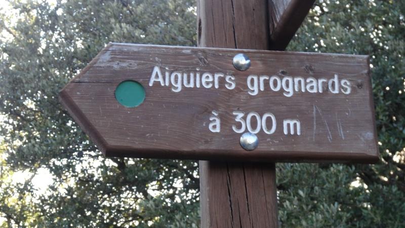 une superbe balade de 16 kms.... Aiguie45