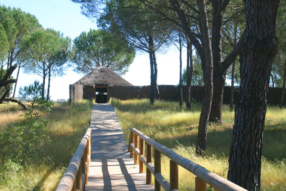 Doñana La_roc15