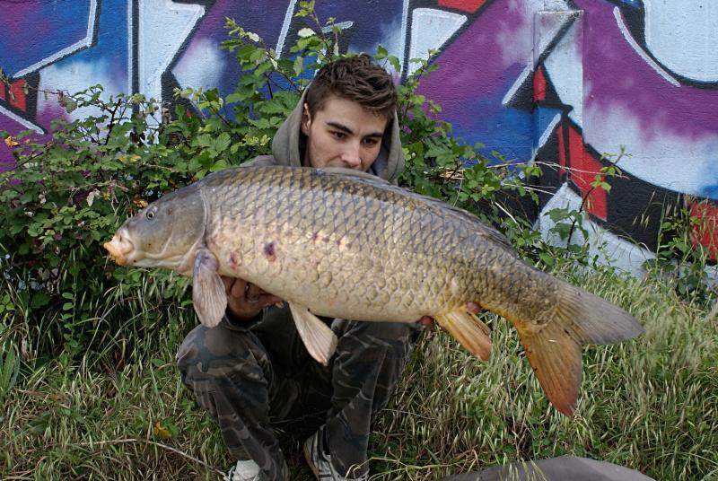 enfin un fish... Dsc05910