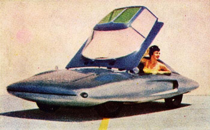 El Tiburon Mi046212