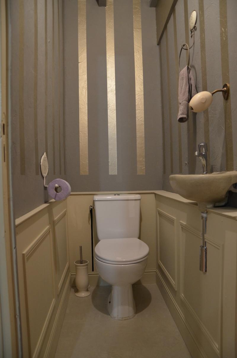 comment cacher la tuyauterie des wc? Dsc_0319