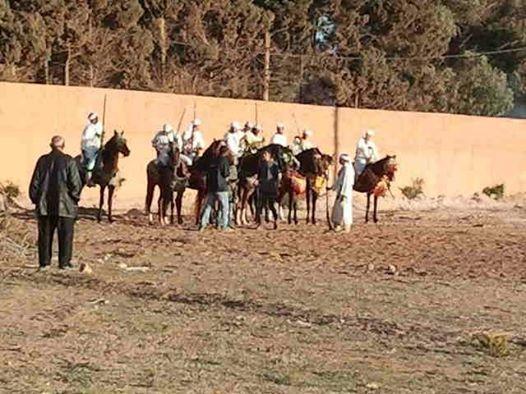 Ouled Mimoune renoue  avec Le cheval et les arts équestres  (Tbourida) Tbouri11