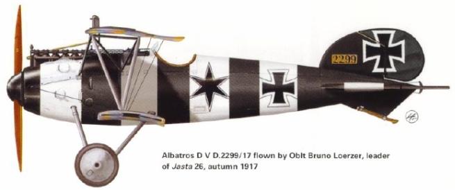 Montage: Albatros D-V 1/72 Doc_pr10