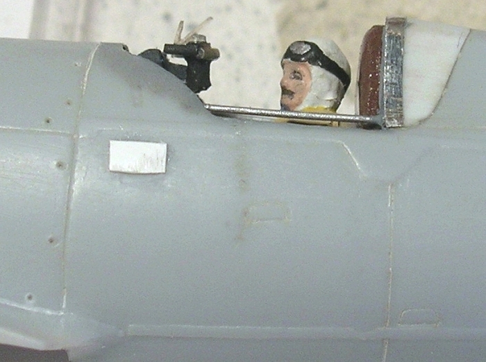 IAR80 1/72 Montag32