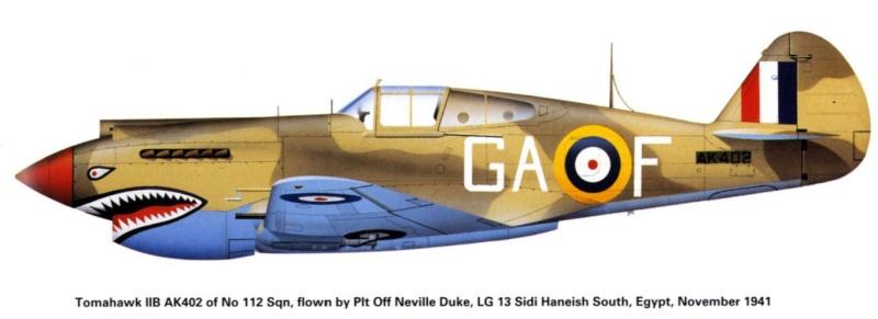 Montage: Curtiss Tomahawk MkIIB 1/72 P40b-g10