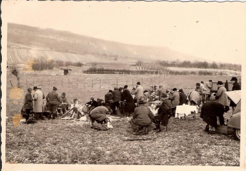 Battue en Alsace à la belle époque 18310