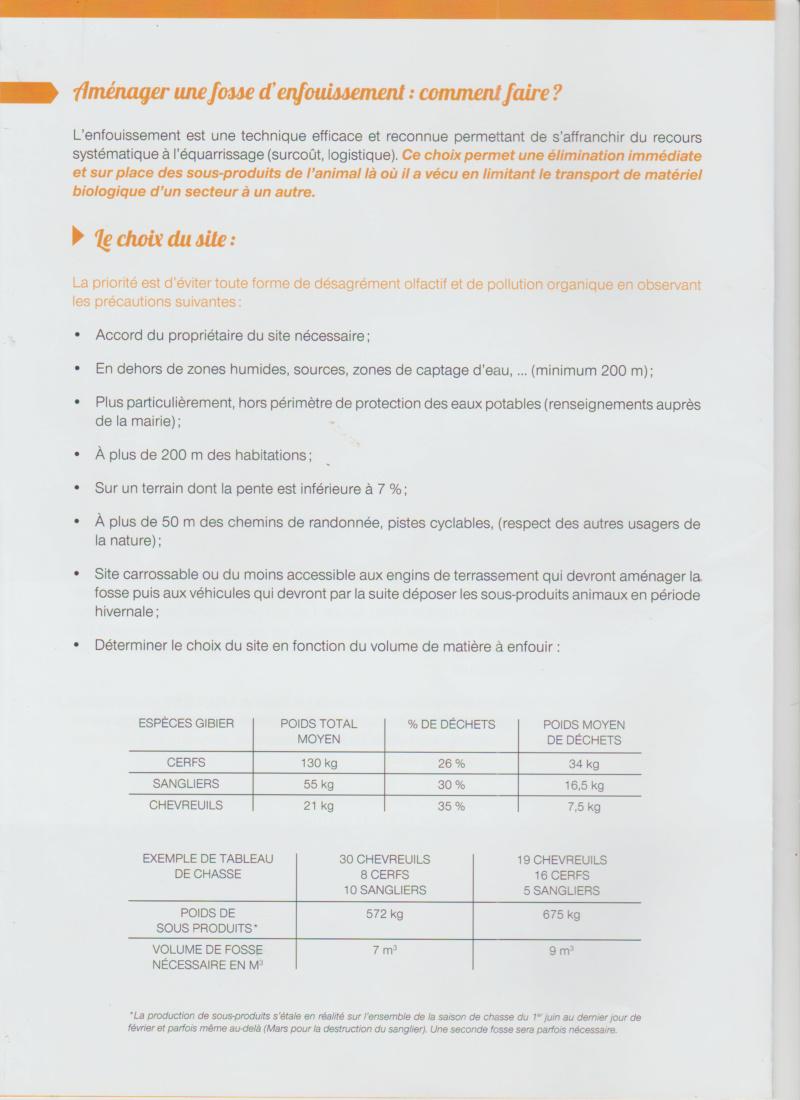 Dépouille  Enfoui12