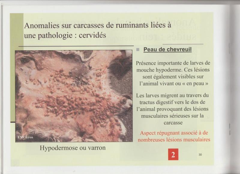 Dossier Hygiène et traitement de la venaison Hy3110