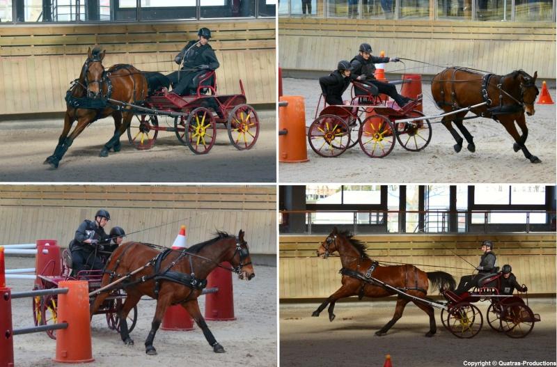 Mars 2014 - 4ème Indoor Deauville-PIC - Le concours Amateur 2 et Club - Page 3 13_joh10