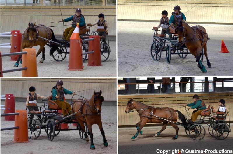 Mars 2014 - 4ème Indoor Deauville-PIC - Le concours Amateur 2 et Club - Page 3 14-joe10