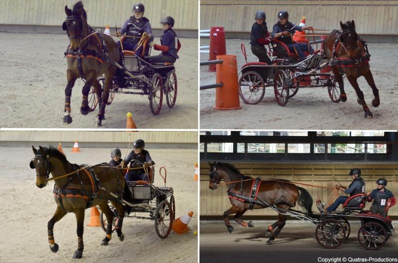 Mars 2014 - 4ème Indoor Deauville-PIC - Le concours Amateur 2 et Club - Page 3 16_jac10